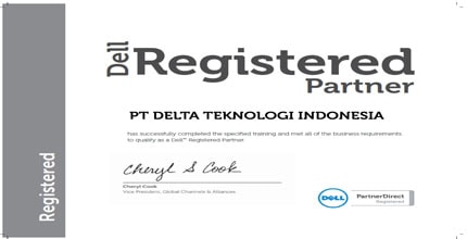 Dell Partner, noframe